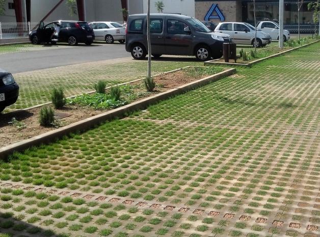 paviment lloseta losa verde pavimento exterior